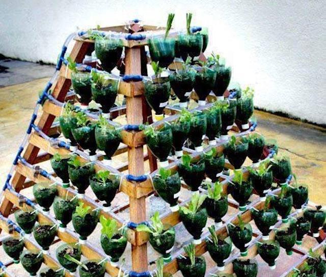 pyramid-garden-resize