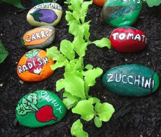 rock-garden-resize
